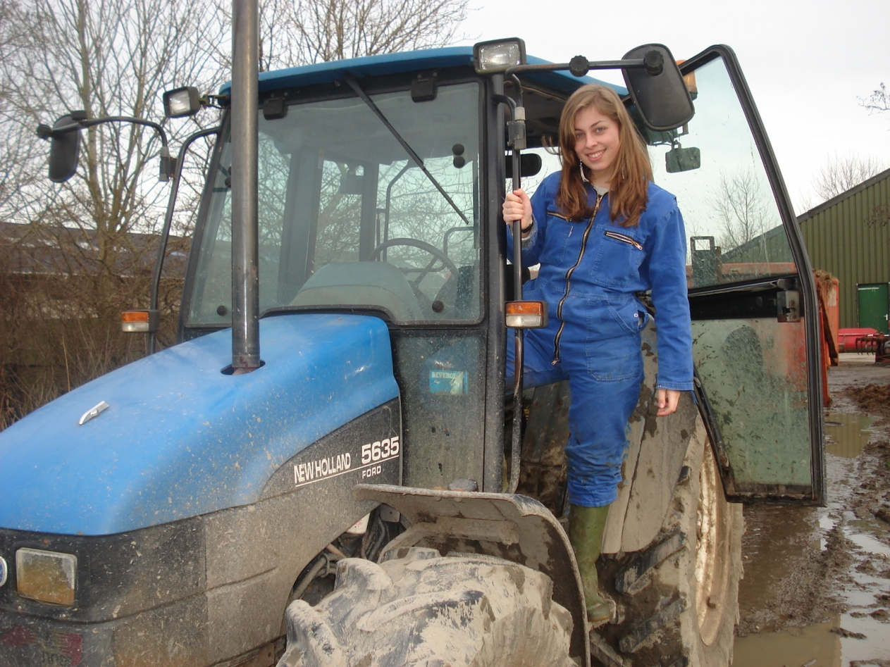 new holland lady